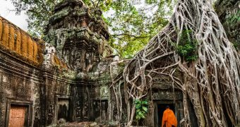 Taprohm ancient university in jungle