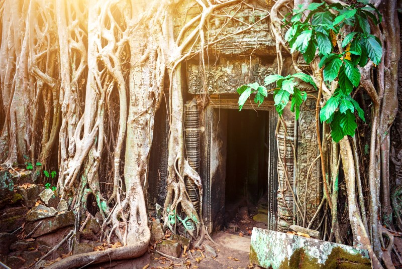Taprohm ancient university in jungle, Cambodia