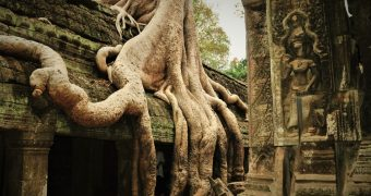 Taprohm ancient university